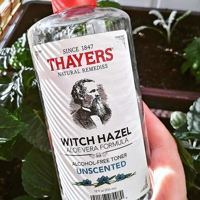 Thayer Alcohol Free Witch Hazel Toner