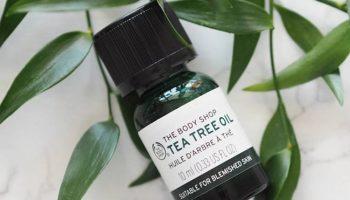 Cách dùng tea tree oil