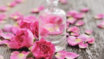 Nước hoa hồng nào tốt