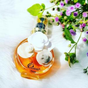 nước hoa Charme mùi hương
