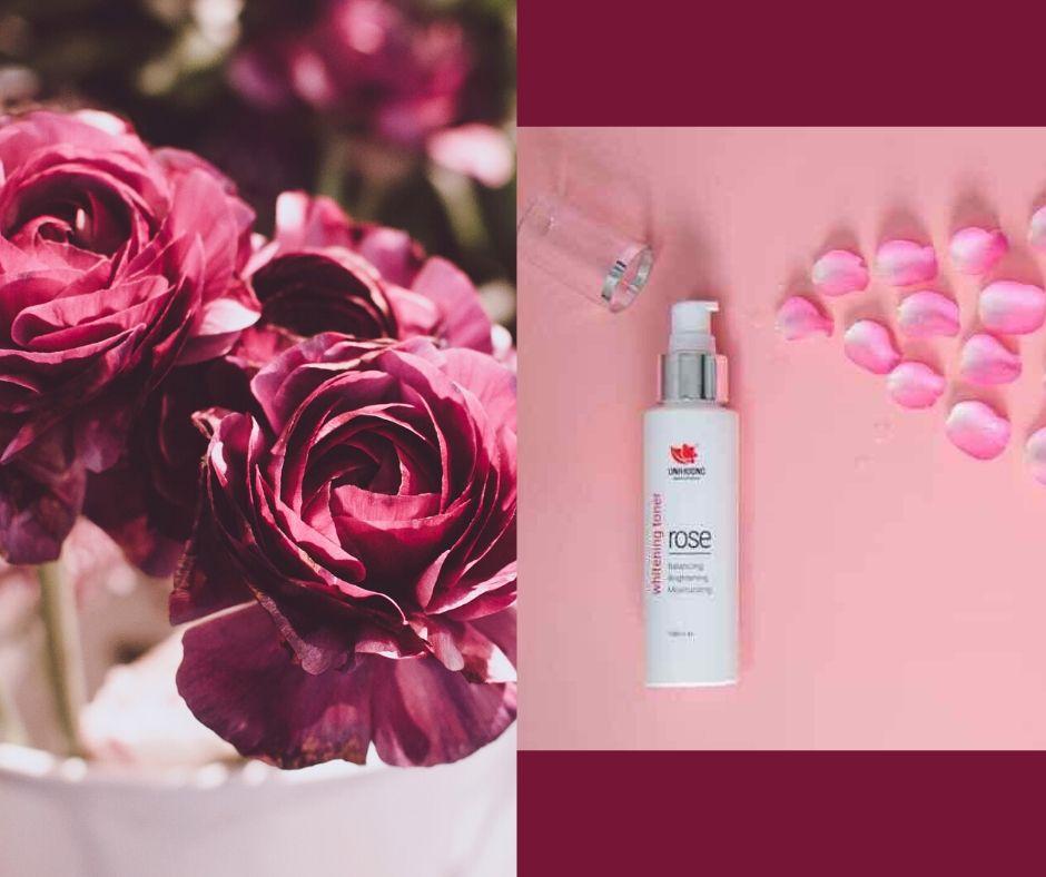 Giới thiệu về nước hoa hồng Linh Hương